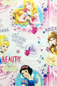 PAPEL REGALO DISNEY 25PCS PRINCESS SPIRIT