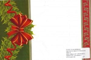Carpetas de Navidad 50yds #15